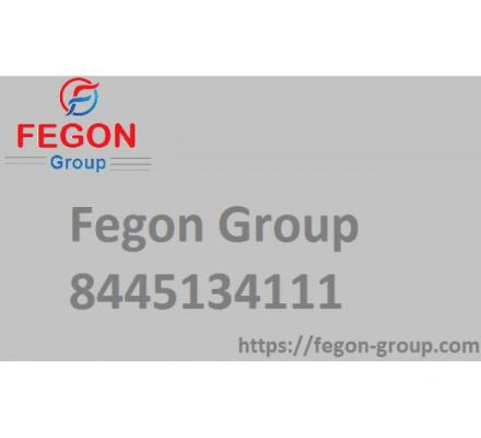Fegon Group LLC | 844-513-4111 | Network Security