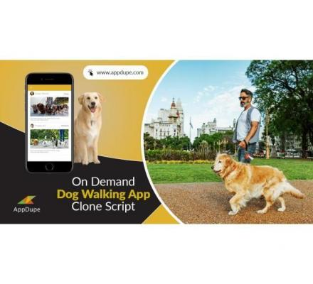 Revolutionize the market with an on-demand dog walking app