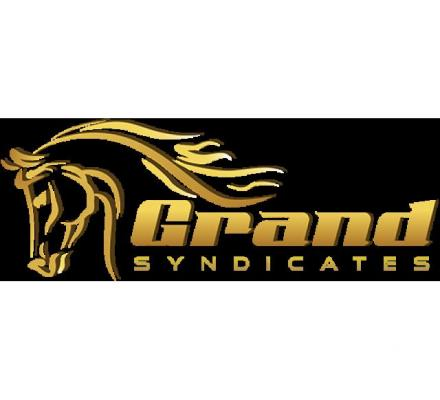 Grand Syndicates