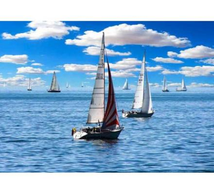 Invest in a Yacht rental app development for assured ROI