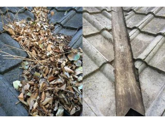 Gutter Cleaning Services in Melbourne