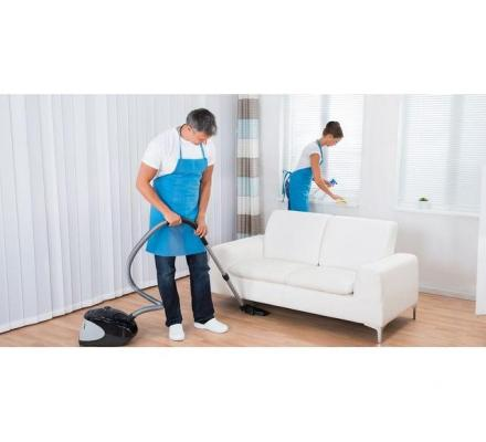 Looking for Best and Most Trusted Cleaners in Greenvale