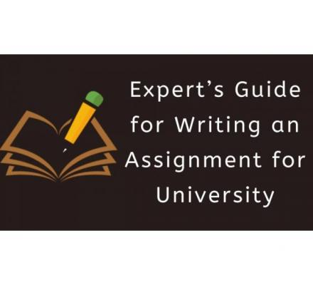 Do you need University Assignment Help?