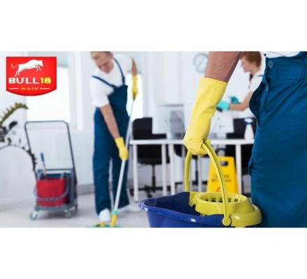 Why you should hire Professional Bond Cleaners Langwarrin