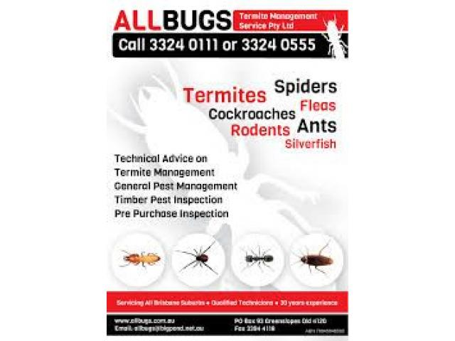 Pest Control Brisbane Services Offered At Affordable Rates by Accredited Professionals