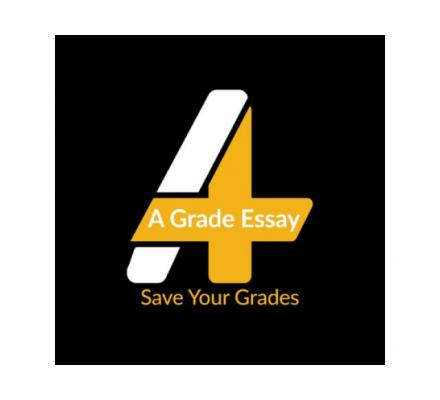 Have your custom essay written professionally by experts!