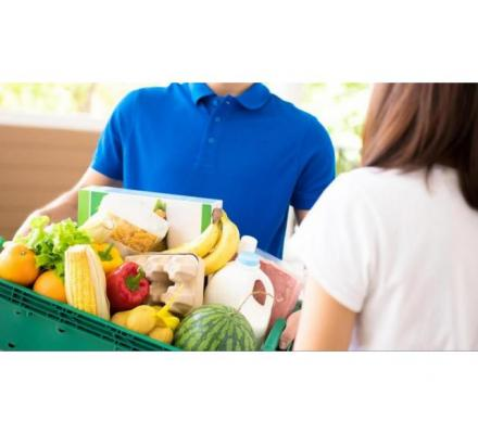 What will make your on-demand grocery delivery business popular in the current market?