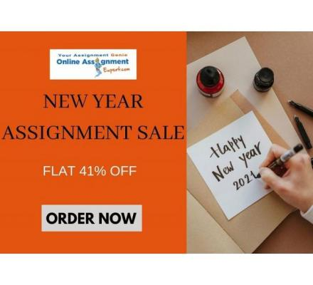 GRAND New Year Sale Is Live NOW- Grab Flat 41% off on all Assignments!