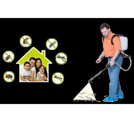 Pest Control Hoppers Crossing - On Time Pest Control