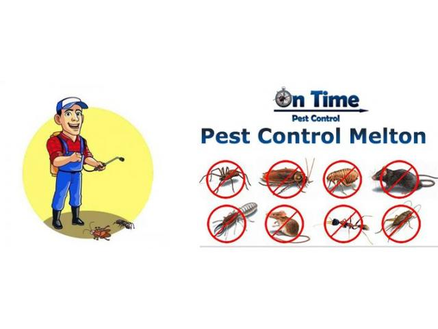 Pest Control Werribee - On Time Pest Control