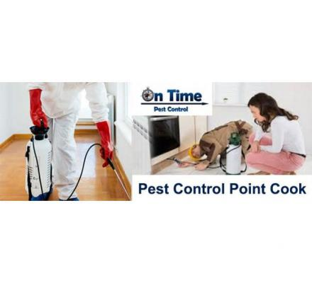 Pest Control Point Cook - On Time Pest Control