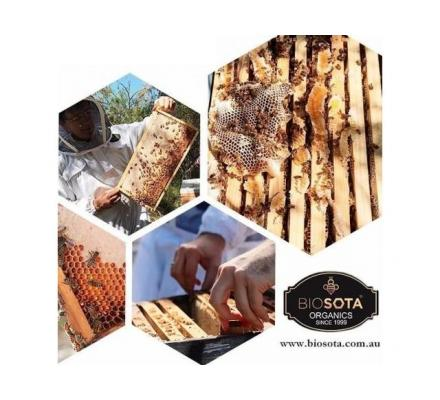 Hire a Renowned Company for the Finest Quality Manuka Honey Wholesale