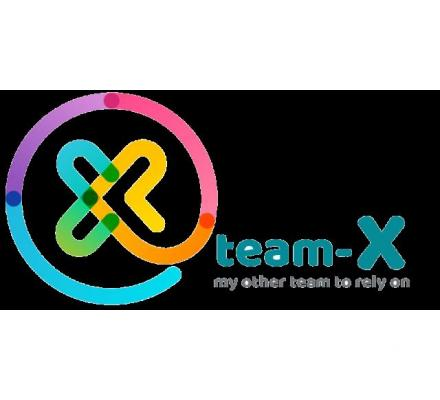 Team-X Web Development and SEO