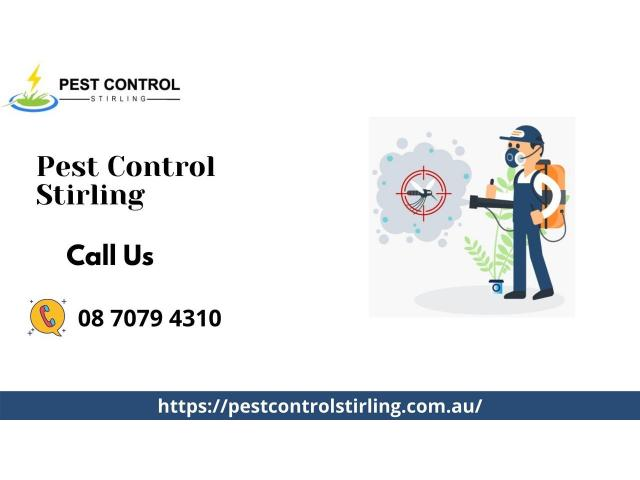 Top Pest Control Services in Stirling, SA