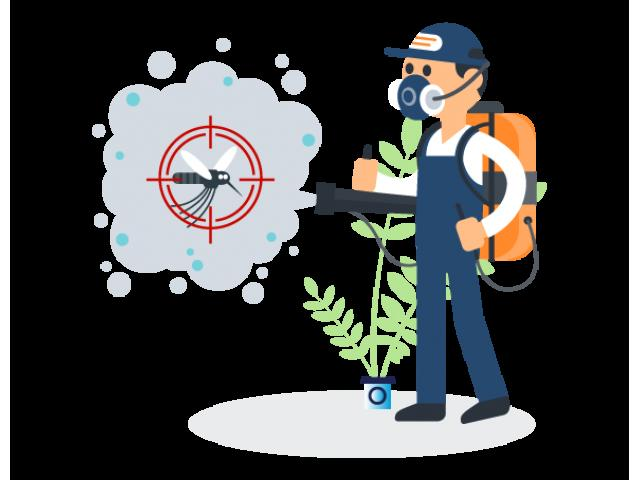 Top Pest Control in Kellyville