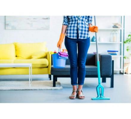 Professional lounge cleaning Sydney service