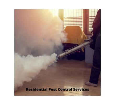 Effective Pest Control Services in Happy Valley