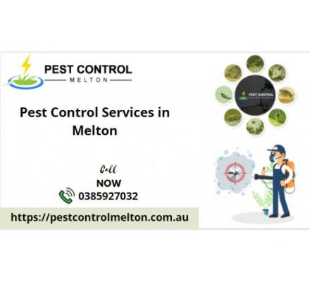 Top Pest Control Services in Melton