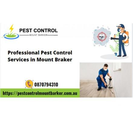 Professional Pest Control Services in Mount Barker