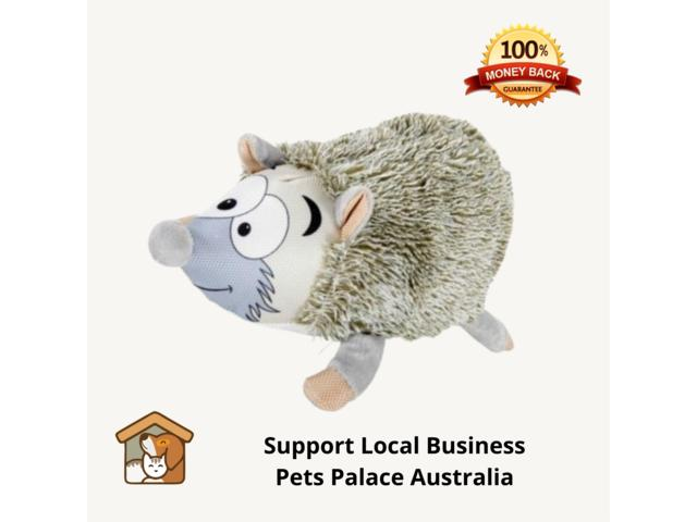 Buy Premium Dog and Puppy Accessories in