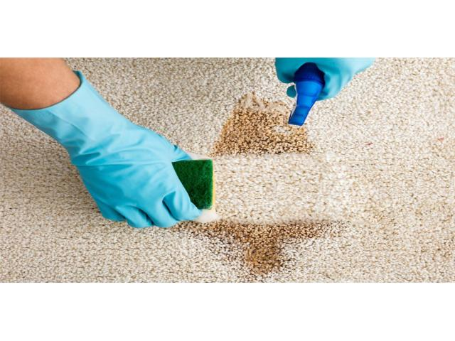 Quality Bond Cleaning in Ipswich with 15% Discounted Price