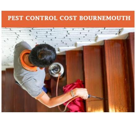 We are the best affordable pest control in Bournemouth services available in the market.