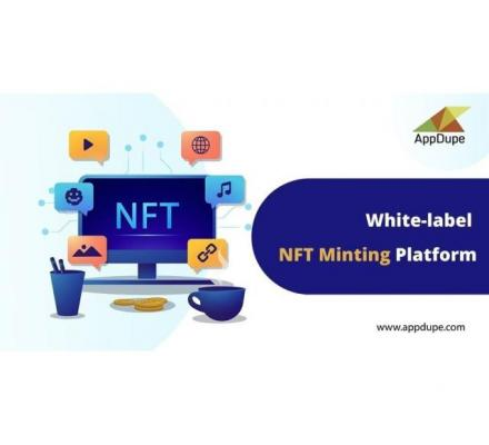 Offer more value for content creators by launching an NFT minting software