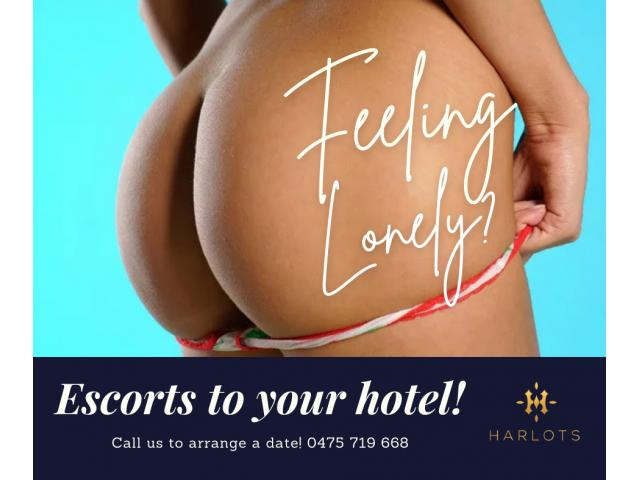 Canberra's Hottest Babes -  0475 719 668 - Just The Right Amount of Wrong!