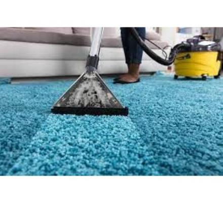 High-Quality Carpet Cleaning in Wollongong by Accredited Professionals