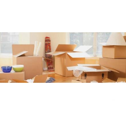 Removalists in Perth on Whom You Can Trust