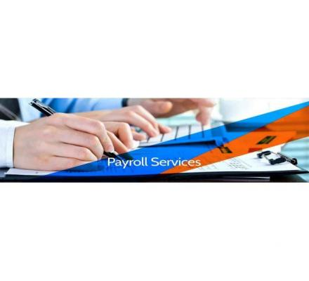 IT contractor payroll companies