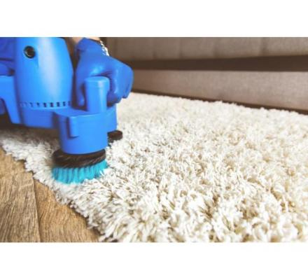 Hire Professionalised Rug Cleaning Services in Sydney