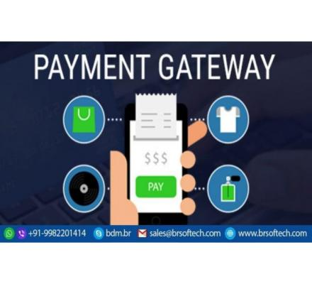 How To Build A Payment Gateway App Like Paypal?