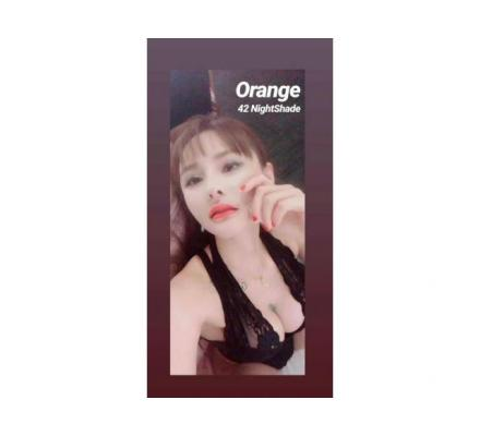 Orange Chinese companion with sweet personality