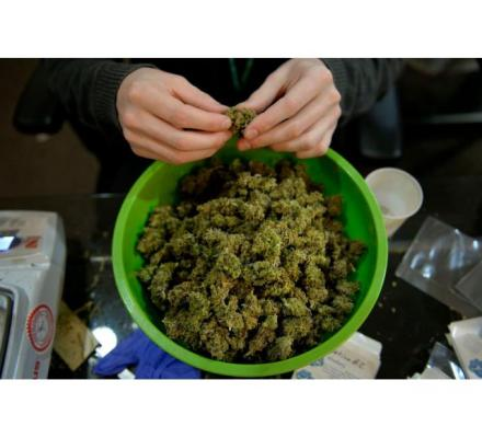 Buy medical marijuana from our online dispensary