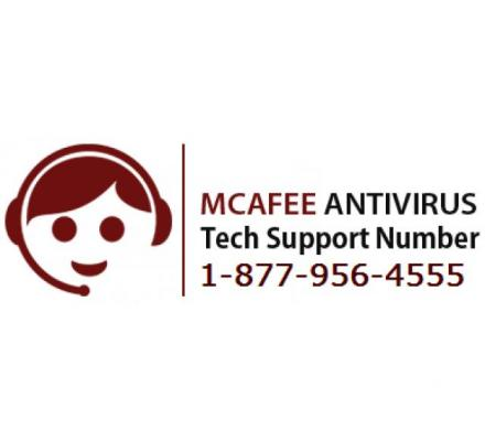 Troubleshoot Your McAfee Issues By Dialing McAfee Phone Number 1-877-956-4555