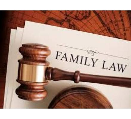 Get the Best Solution Delivered By Family Lawyers