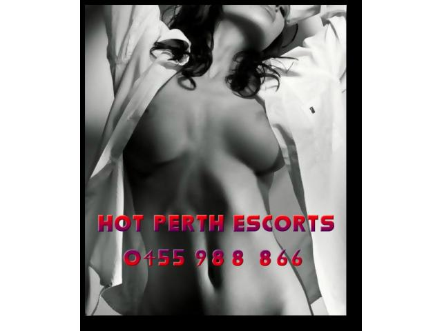 Perth's Sexiest Ladies Delivered Whenever, Wherever!